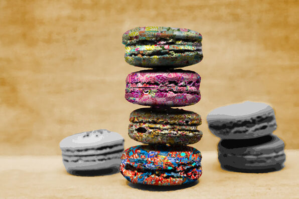Garden of Life artwork collection by Kristel Bechara-Macarons